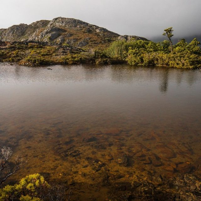 Cradle Mountain NP I am in NSW and its pouringhellip