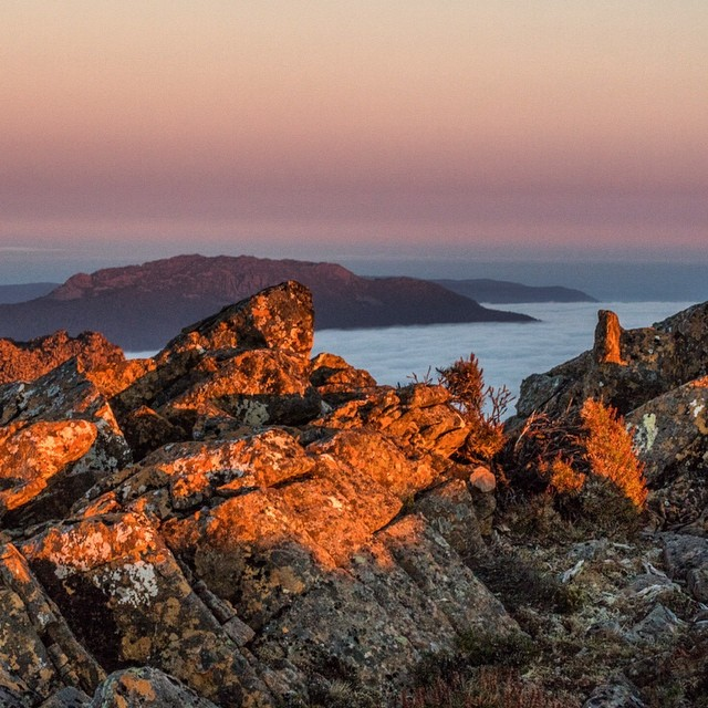 Early light Ben Lomond Sorry folks I have been ahellip